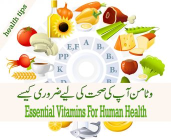 Essential Vitamins For Human Health