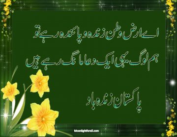 National Poetry Of Pakistan For Facebook