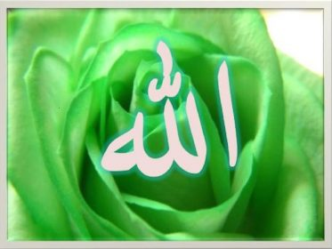 Beautiful names of ALLAH