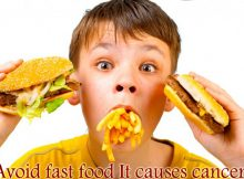 Fast Food And Burger Can Cause Cancer Be Careful