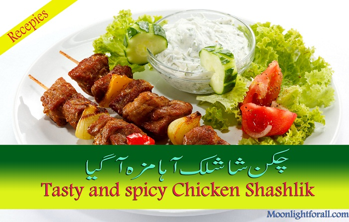 Chicken Shashlik Chinese Recepie