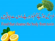 Food that cleanse the body from toxin