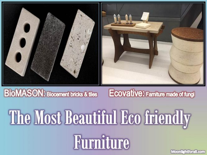 The Most Beautiful Eco friendly Furniture