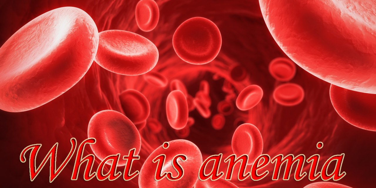 Anemia symptoms causes and cure