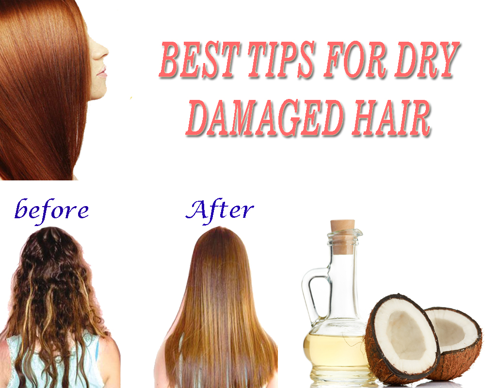 BEST TIPS FOR DRY DAMAGED HAIR